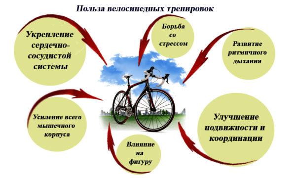 польза езды на велосипеде