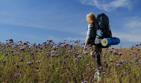 Прогулка на природе для стабилизации уровня самооценки