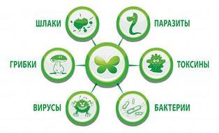 Виды токсинов