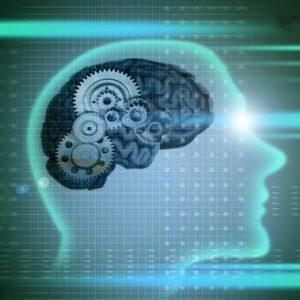 наблюдения развивают память