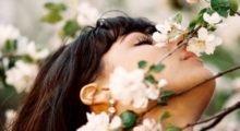 влияние запахов